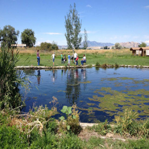 Moutain Valley Trout Farm in Smithfield, Utah