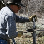 Jay Wilde Fixing Fences